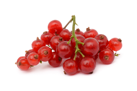 currants: Fresh red currants on a white background Stock Photo
