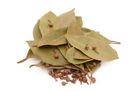 droge laurierbladen op een witte achtergrond Stockfoto