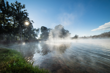 Fog over the water next to the forest, sunny day, clear sky Imagens