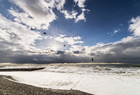 beach stormy sea at sunset and flying seagulls Stock Photo