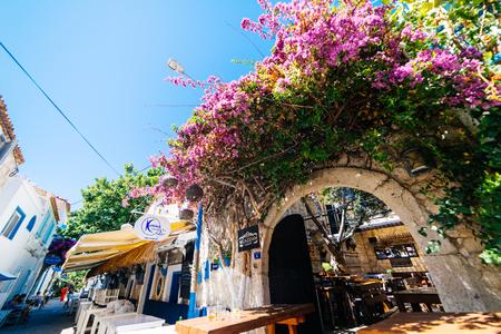 Europe,Turkey.Alacati、チェシュメ、ピンクの花の街 写真素材