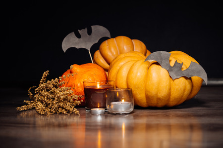 celebration: composition for decorating the house for halloween, yellow and orange pumpkins, burning scented candles, drawings of black bats