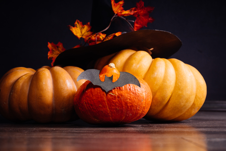 autumn holiday Halloween. Halloween pumpkin with a hat. Witches hat with autumn leaves. Haloween style, bats