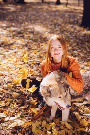 young beautiful red-haired girl walking with her big gray dog in the park, around fallen autumn leaves Stock Photo