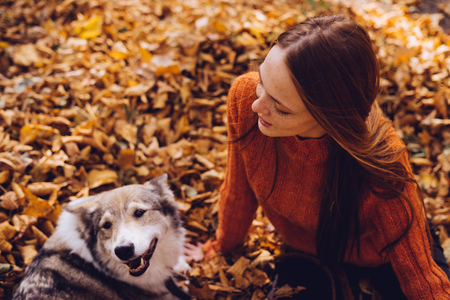 play the old park: beautiful red-haired girl playing with her big dog in fallen autumn leaves