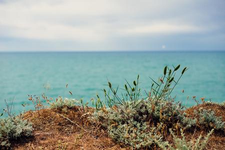 blue cold sea, against a high cliff