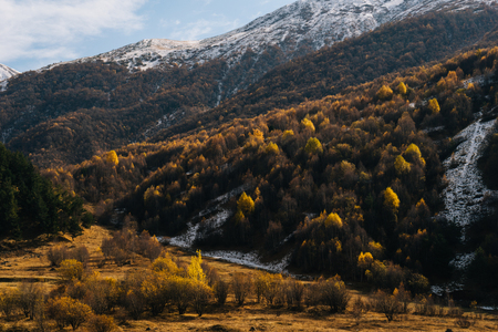magic enchanting nature, majestic mountains covered with snow, many trees on the slopes