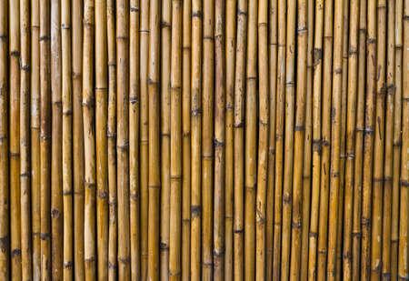 Bamboo walls with unique patterns.