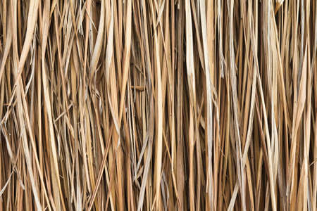 Walls made of dry grass. Stock Photo