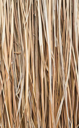 Walls made ​​of dry grass. Stock Photo