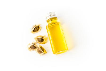 moringa seed oil Stock Photo - 27084235