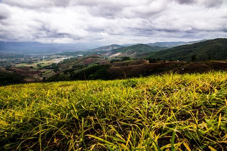 Maejam Chiangmai photo