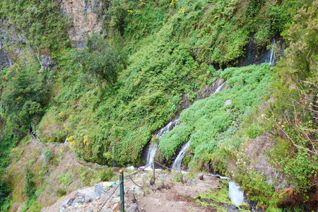 Hiking trail leading to waterfalls hidden deep in the mountains and laurel forest of Los Tilos, La Palma.