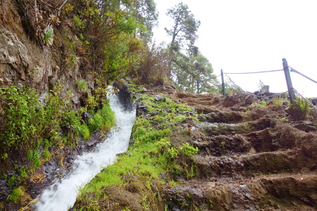 Hiking trail leading to waterfalls hidden deep in the mountains and laurel forest of Los Tilos nature reserve called Naciente Marcos and Corderos, La Palma, Canarias