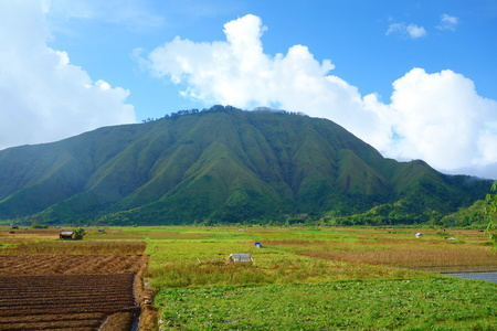 Pegasingan Hill located near to Rinjani Volcano in Central Lombok, Indonesia, South-East Asia