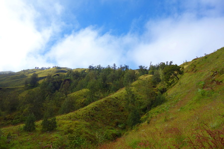 Slopes of Rinjani volcano located in Lombok island, Indonesia, South-East Asia 版權商用圖片