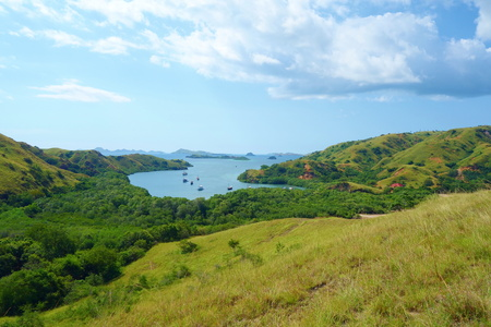 Rinca island which is a part of Komodo national park which is a place where you can meet komodo dragons, Indonesia, South-East Asia Imagens
