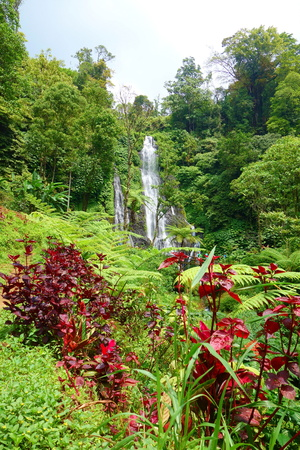 Jungle waterfall cascade in tropical rainforest with rock and turquoise blue pond. Its name Banyumala because its twin waterfall in mountain slope, Bali, Indonesia
