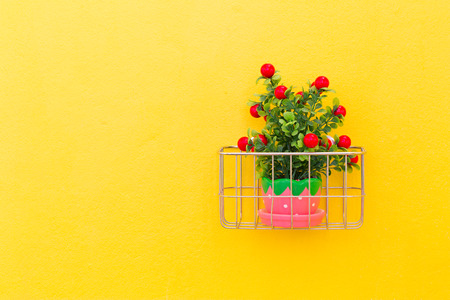Fake ornamental plants with concrete wall background. photo