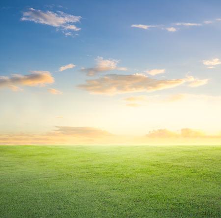 grassland: Empty grassland and sky at evening time.