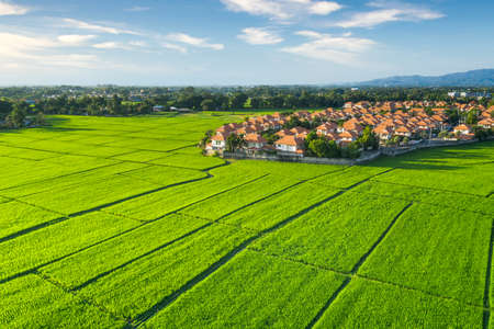 Land plot in aerial view. Include landscape, real estate, green field, crop, agricultural plant. Tract of land for housing subdivision, development, owned, sale, rent, buy or investment in Chiang Mai. 版權商用圖片 - 164042894