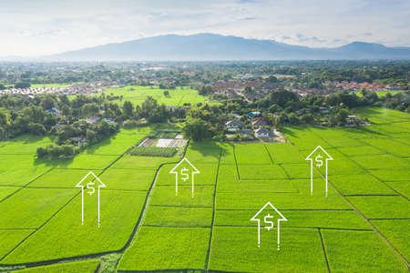Land values in aerial view. Consist of landscape, green field and agriculture farm. That real estate or property for housing subdivision, development, sale, rent, buy or investment in Chiang Mai.