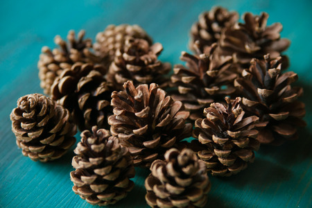 Pine cones. Pine cones texture. Pine cones background. Pine cone. Abstract background and texture for designers. Close up view of brown pine cones for texture and background.