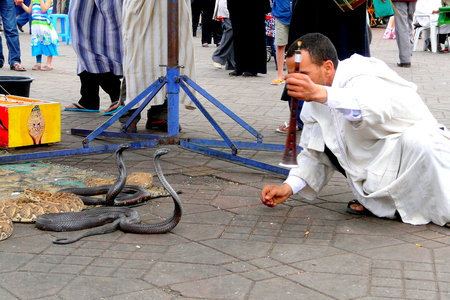Marrakech, Morocco - April 20th of 2014: Snake charmer facing two egyptian cobras at Djemaa el Fna square, a place recognized by UNESCO as a masterpiece of the Oral and Intangible Heritage of Humanity Editorial
