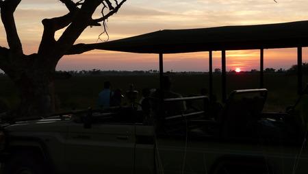 okavango delta: Enjoying the sunset from the jeep on a game rest in Pom-Pom Island, Okavango Delta, Botswana.