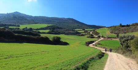 camino: Pilgrims walking through endless green fields under the sun of a beautiful spring morning, Camino de Santiago, Navarra, Spain.