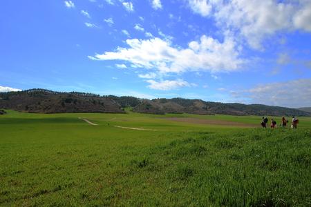 camino de santiago: Pilgrims walking through endless green fields under the sun of a beautiful spring morning, Camino de Santiago, Navarra, Spain.