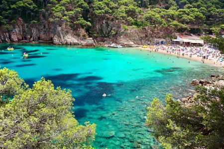 Acque di cristallo vicino alla bella spiaggia di Aiguablava nel villaggio di Begur, Mar Mediterraneo, Catalogna, Spagna. Archivio Fotografico - 81201517