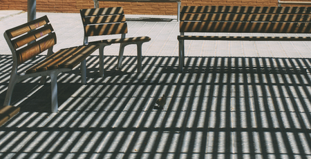 Bench in the park shadows