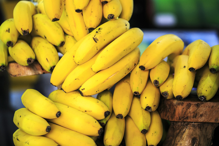Group of Canarian islands bananas. Stock Photo