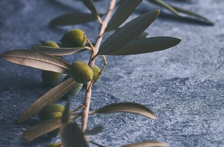 Olive branches in blue stone background Imagens