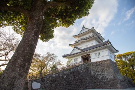 odawara: Odawara Castle is a Hirayama-style Japanese castle in Odawara, Japan.