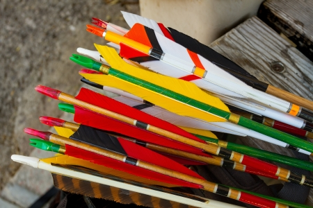 Colourful Arrows for archery use