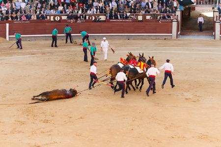 las ventas: MADRID, SPAIN - MAY 30 - Action taking place during the bullfighting in Las Ventas, in Madrid, Spain, May 30, 2014