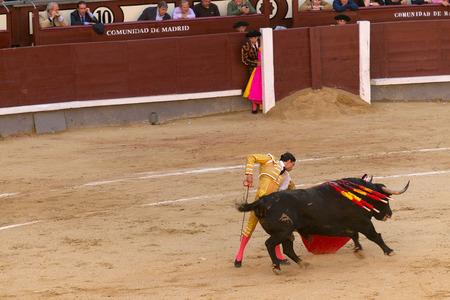 las ventas: MADRID, SPAIN - MAY 30 - Action taking place during the bullfighting in Las Ventas, in Madrid, with Paco Ureña bullfighter, Spain, May 30, 2014
