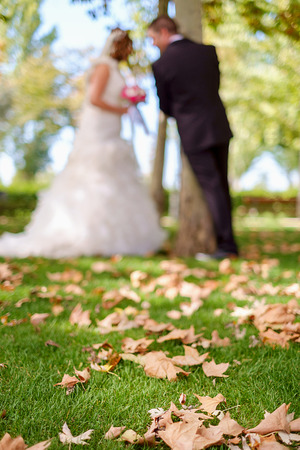 Bokeh of a wedding couple at the park covered by dry leafs photo