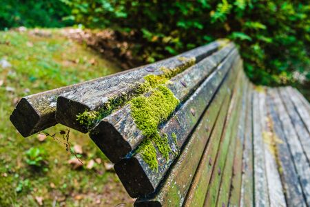 Close up of a bench in the park Stock Photo