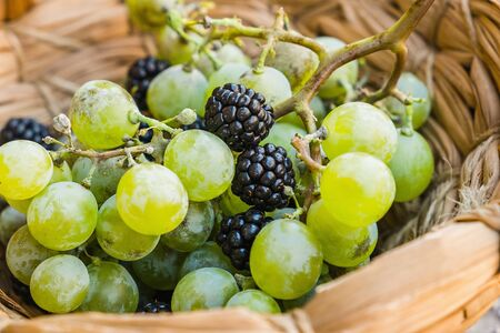 Grapes and blackberries in a wooden basket