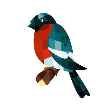 bullfinch: Bullfinch abstract isolated on a white , vector illustration