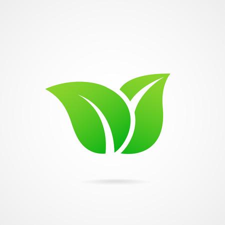 vettore icona foglia