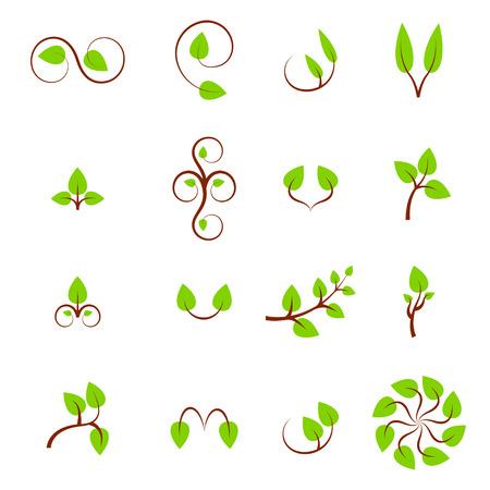 꽃 디자인 요소의 집합 잎 기호, 아이콘 및 징후 컬렉션