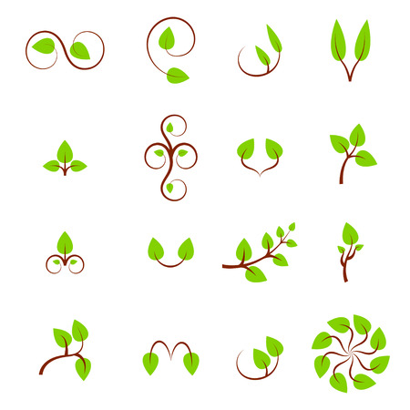 Leaf symbols, icons and signs collection  Set of floral design elements