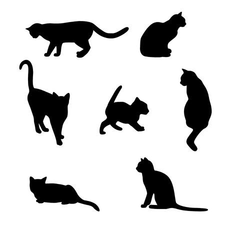 Silhouetten von Katzen