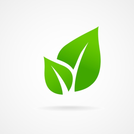 Eco icon green leaf vector illustration isolated Çizim