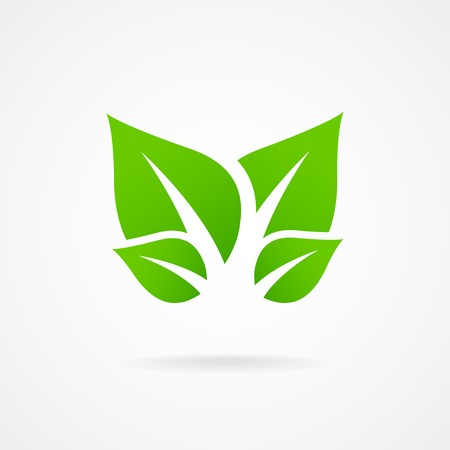 green leafs: Eco icon green leaf vector illustration isolated Illustration