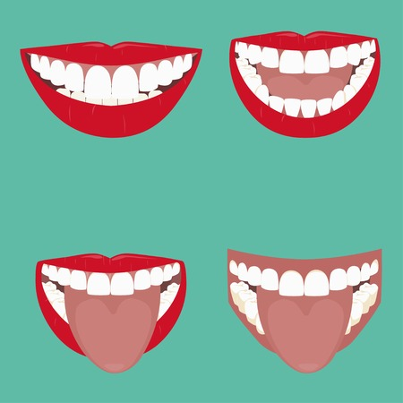 開いている口のベクトル イラスト。歯で美しい笑顔